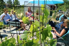 Sommarfest på kolonilott